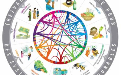 Comment construire des systèmes alimentaires durables?  La FAO et l'INRAE nous aident à y voir plus clair avec ce manuel qui comprend même une présentation d'Open Food Network !